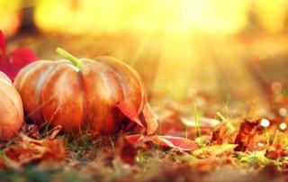 fallfestivalsinnewjersey