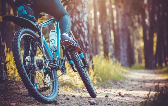 Best Spring Bike