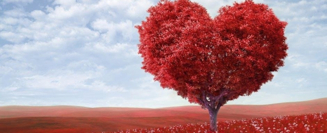 Heart Health and Eye Health Intimately Interconnected