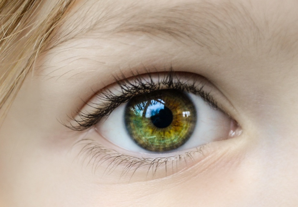 Eye Color- More Than Meets the Eye